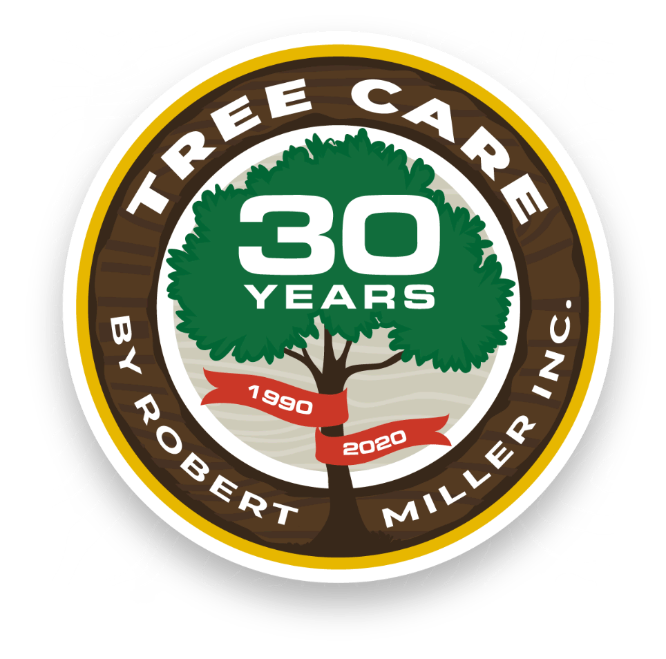 Tree Care by Robert Miller, Inc. — 30 Years