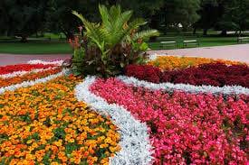 florida flower beds - millerstreecare.com