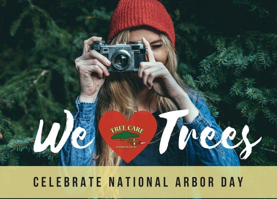 10 Fun Ways to Celebrate Arbor Day with Kids